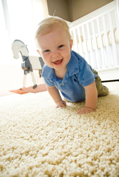 why-choose-our-carpet-cleaning-service